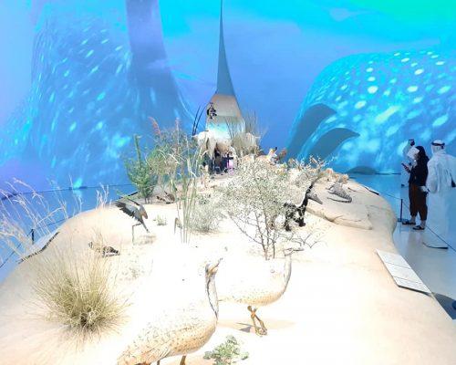 Muzeum Doha7